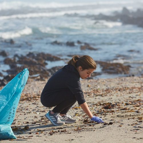 21st Beach Clean Up Day President Hotel Bantry Bay18