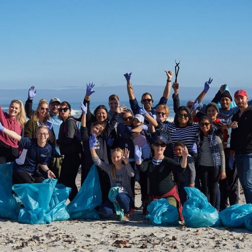 21st Beach Clean Up Day President Hotel Bantry Bay28